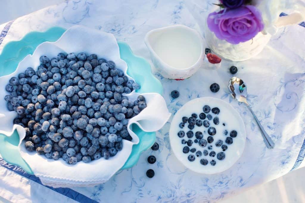Restore Gut Health - Foods Rich in Probiotics