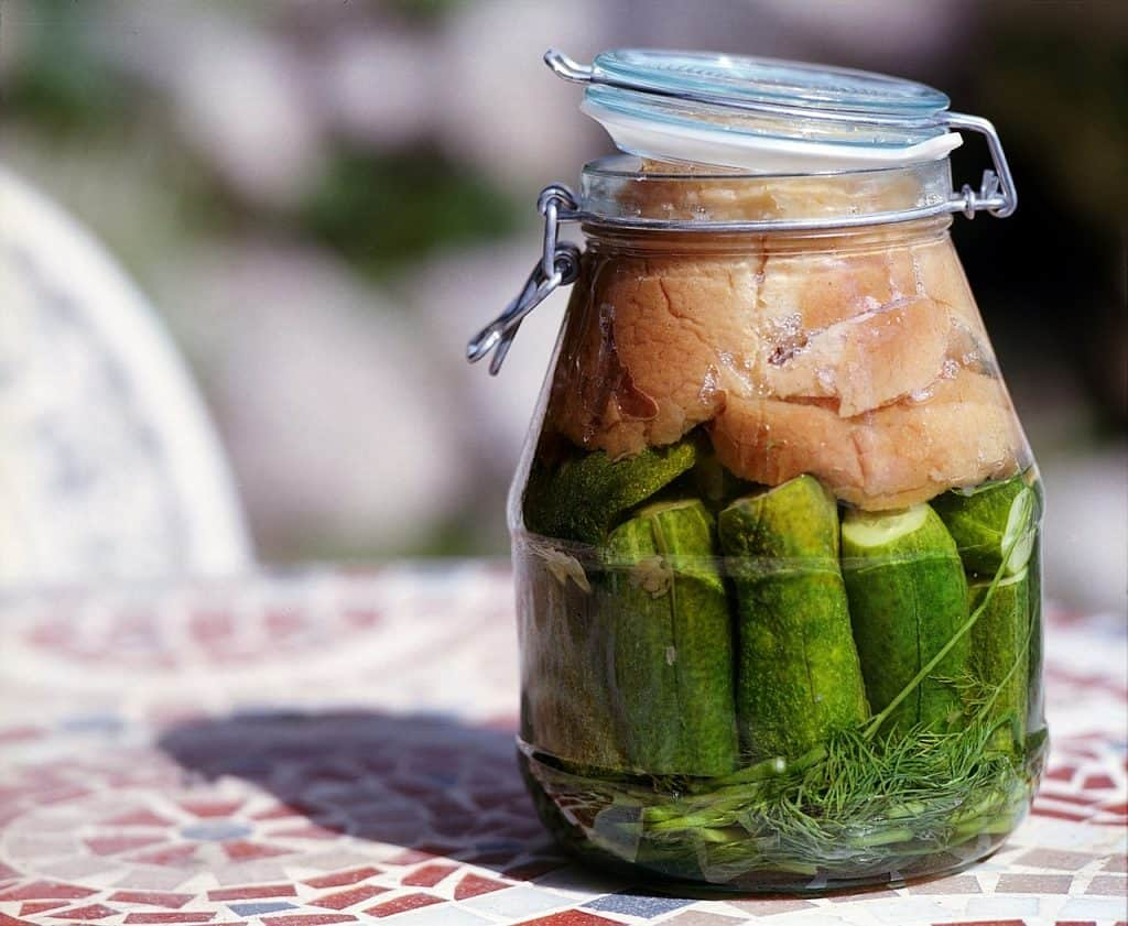 Restore Gut Health - Fermented Foods